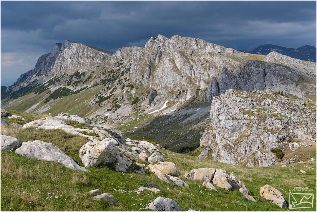 Formațiuni Calcaroase în zona Muntele Bătrâna - Strunga