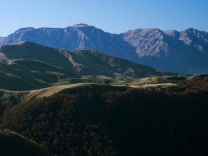 drumetii-alpine-1