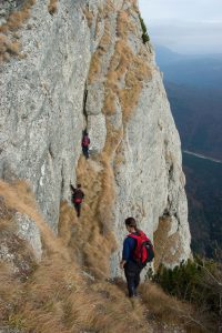 drumetii-alpine-10