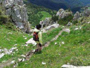 drumetii-alpine-19