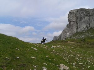 drumetii-alpine-23